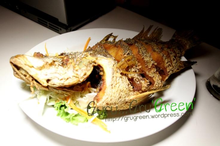 ปลากระพงทอดน้ำปลา ร้าน Number 9 by Guru GruGreen 01