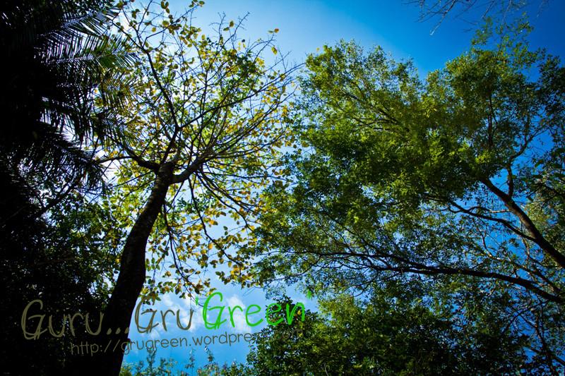 น้ำตกวังก้านเหลือง ลพบุรี by Guru GruGreen 13