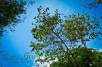 น้ำตกวังก้านเหลือง ลพบุรี by Guru GruGreen 10
