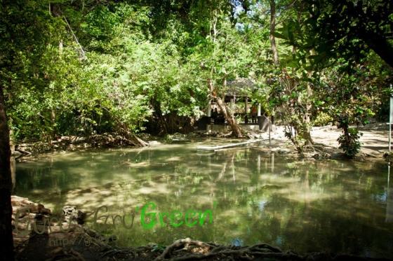 น้ำตกวังก้านเหลือง ลพบุรี by Guru GruGreen 11
