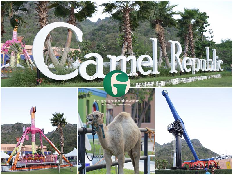 Camel_Republic_หัวหิน_grugreenplus_1